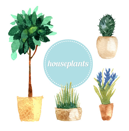 Watercolor vector set of house plants. Vector illustration Illustration