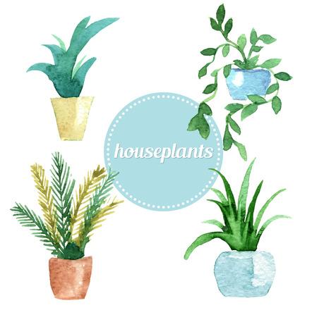 家の植物の水彩ベクトルを設定します。ベクトル図