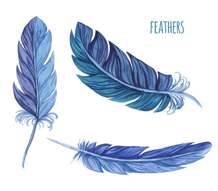 Set of watercolor feathers. Vector illustration Иллюстрация