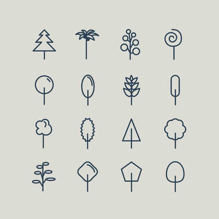 oaks: Set of line icons. Trees: palm tree, fir-tree, oak, pine. Vector illustration Illustration