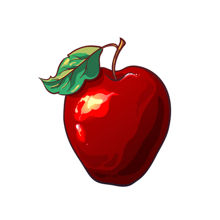 The red apple isolated on a white background. Bright summer fruit. Vector illustration