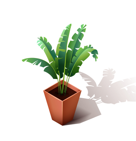 Isolated ceramic flowerpot with a grass. Isometric  the house flower isolated on a white background. Vector illustration