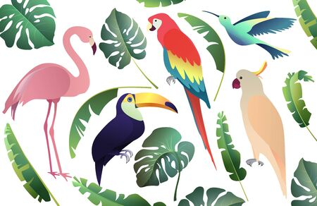 Tropical birds set: parrots, flamingo and toucan. Palm and monstera leaves, jungle leaf.  Collection on the white background. Vector illustration