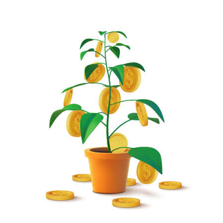 Realistic Money tree with gold coins dollars. Finance and banks, savings and investments. Vector illustration
