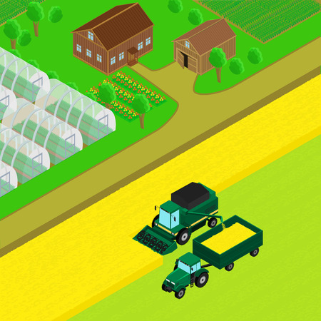 tractor trailer: illustration. Farm house with barn, country road, field of wheat. Combine and tractor trailer  harvest wheat. The greenhouse crops. infographics isometric