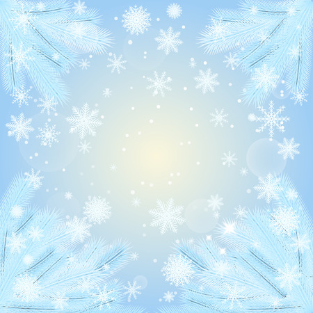 hoarfrost: vector illustration. Christmas background with fir branches covered with hoar-frost, with snowflakes