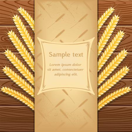 harvesting rice: vector illustration. Wheat on wooden background, vintage booklet. Illustration