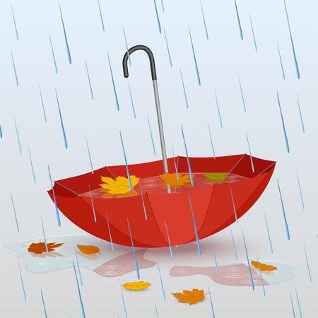 雨、水たまりの水と黄色い落ち葉の傘