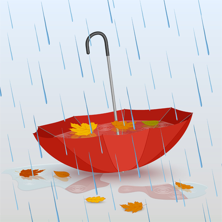 Umbrella in the rain, puddles of water and fallen yellow leaves