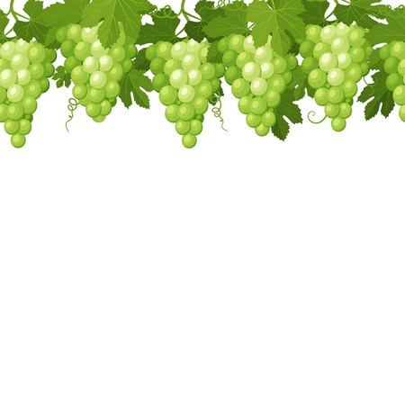 Seamless pattern from the bunches of green grapes