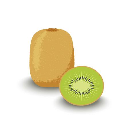 Kiwi whole and cut. Fresh fruits. Vector illustration.
