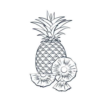 Outline pineapple icon with sliced pineapple on a white background. Vector illustration.