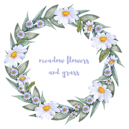 A collection of herbs and flowers. Chamomile, plantain, cornflowers. Watercolor. Banco de Imagens - 105583508