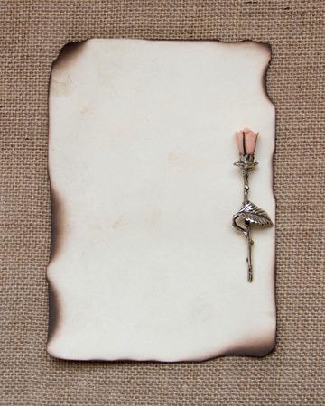 papel quemado: Tarjeta de papel quemado con el rosa de plata