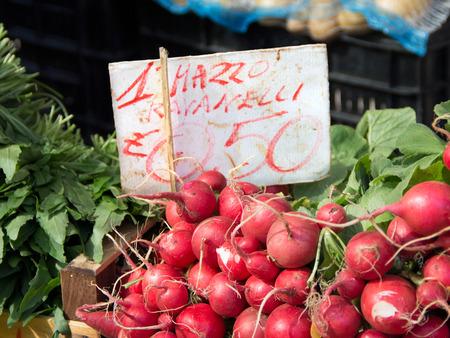 Radish on a market photo