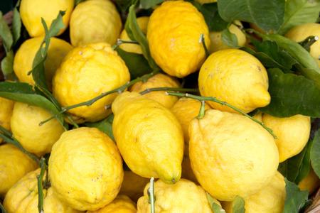 Limoni di Sorrento sul mercato Archivio Fotografico - 28053648