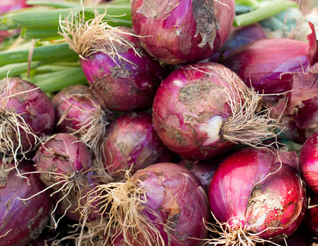 Red onions on a market  photo