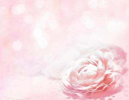 petites fleurs: Arri�re-plan de roses