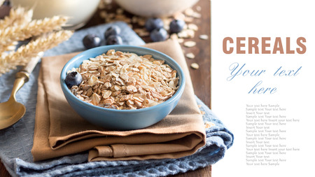 rolled oats: Rolled oats in a blue bowl with blueberries and milk