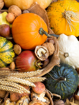Autumn background with pumpkins, mushrooms, pomeranat, wheat and nuts