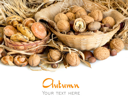 Various Nuts and mushrooms in baskets - autumn background photo