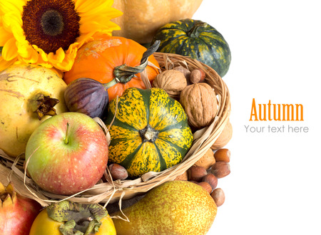Autumn background with fruits, pumpkins, sunflower and nuts photo