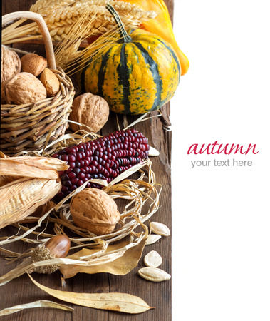 harvest background: Harvest background with corn, pumpkins, leaves and nuts