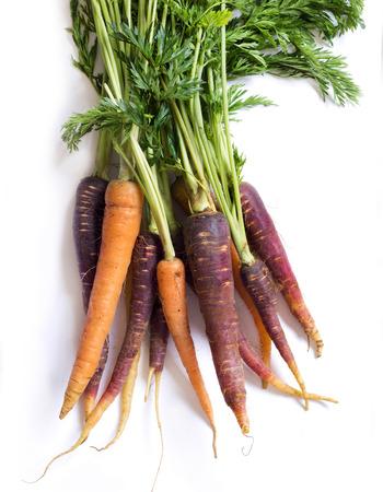 zanahoria: Manojo de zanahorias orgánicas frescas del arco iris aislado en blanco