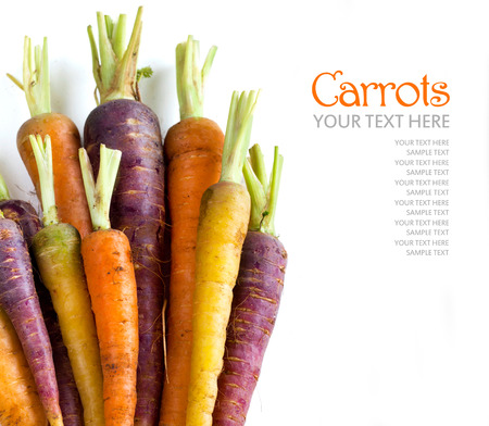 Fresh organic rainbow carrots  isolated on white