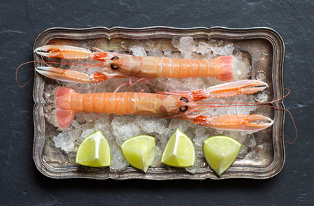 langoustine: Raw langoustine  with lime on ice on a silver tray Stock Photo