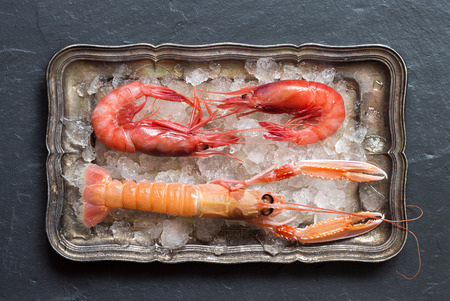 langoustine: Raw langoustine and shrimps on ice on a silver tray
