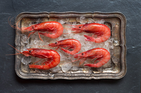 silver tray: Raw shrimps on ice on a silver tray over dark background