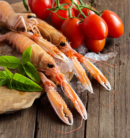 langoustine: Raw langoustine on ice with tomatoes and basil on wood