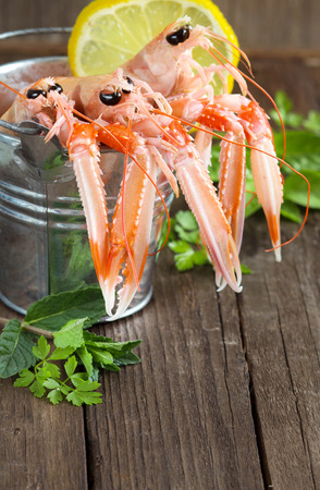 langoustine: Raw langoustine in a bucket with herbs on wood Stock Photo