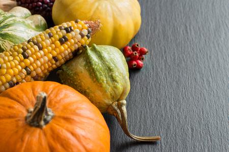elote: Calabazas, mazorcas de maíz y frutas sobre un fondo oscuro Foto de archivo