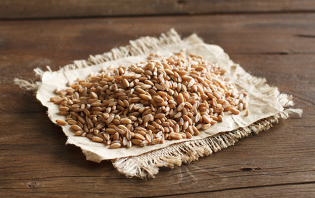 spelt: Pile of Uncooked whole spelt on the table