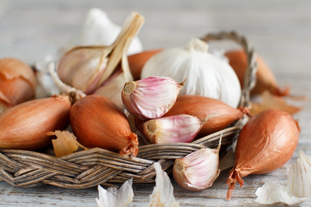 Organic garlic and onion on wooden table close up