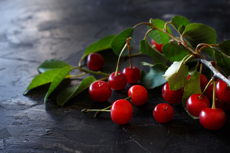 Fresh sour cherries on a dark background close up Archivio Fotografico