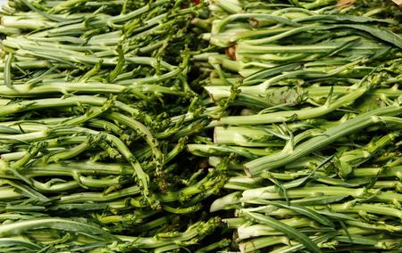 Puntarelle, asparagus chicory on a farmers market Archivio Fotografico