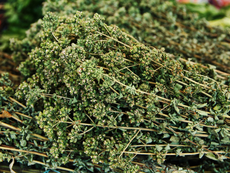 wild marjoram: Bunches of dry oregano on a market