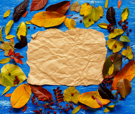 Autumn  leaves and paper on a blue background Archivio Fotografico