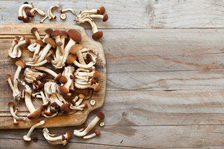 Agrocybe aegerita mushrooms (Pioppino) on a wooden table