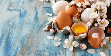 �¡hicken eggs and almond flowers on  a blue wooden background