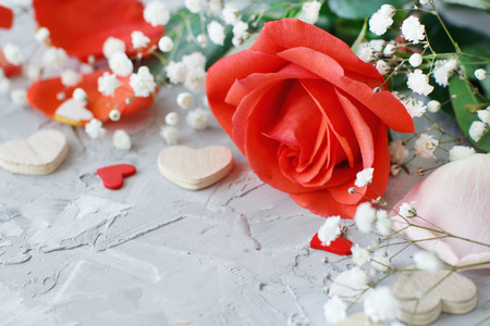 Red roses flowers, petals and hearts on a grey background