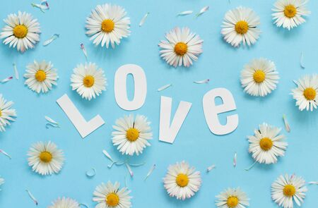 White daisies, petals and text LOVE on a light blue background top view Stock Photo - 137495488