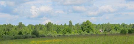 ländliche Landschaft, Straße durch grüne Felder, Perspektive, entferntes Bauernhaus, blauer Himmel. Standard-Bild