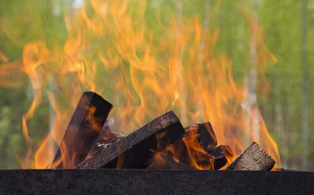 brazier: Fire background in a brazier