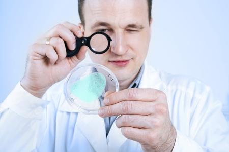 petri: Laboratory assistant studies petri