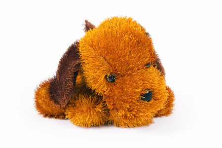 furry stuff: Toy brown doggie is isolated on a white background