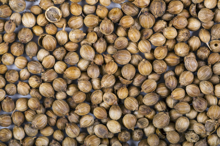 Cardamom elachi dry fragrant aromatic spice on white background Banco de Imagens
